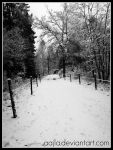 Every mile is two in winter by Aajla