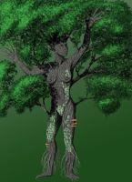 Elemental Faes-Maple Dryad by SarahFraggle
