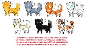 Cat Adoptables OPEN by AnamayCat