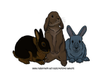 Bunnies by Vlcek
