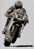 Troy Bayliss - '08 Ducati 1198R WSBK by Samipie