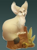 Fennec Fox by skulldog