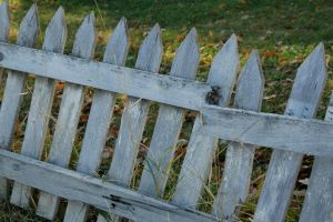 A Fence by mrwit
