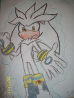 Sliver The Hedgehog by neffeybaby
