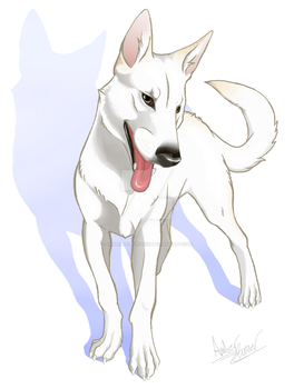 Meeka by animeWolffreak23