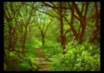 May Woodland by Forestina-Fotos
