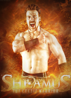 Sheamus: The Celtic Warrior by PainSindicate