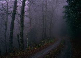 Road less travelled by aponom