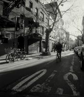 New York City XVIII by DanielJButler