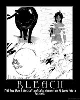 Bleach Demotivator by CrabPope