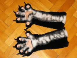 My paws :3 by Sagastrina