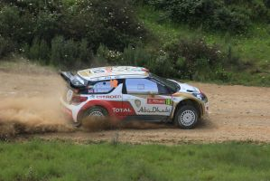 2013, Al Qassimi, Citroen, Ourique, Rally Portugal by F1PAM