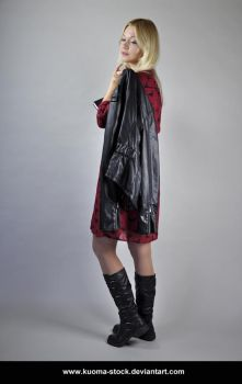 Red and Black 5 by Kuoma-stock