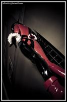 harley queen 12 by findenenmacil