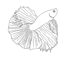 Betta lineart set. by Yumi-Kitten
