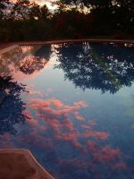 Sunset Combia 2007 8 by ArianneWolodarsky