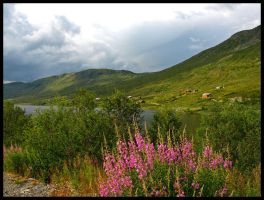 Norway - Dream in Pink by AgiVega