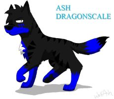 Another boring pic of Ash by WolfAsh