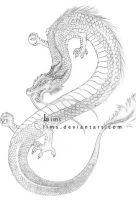 Oriental Dragon by lims