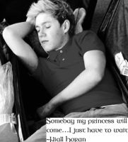 Niall quote by DirectionForLyfe
