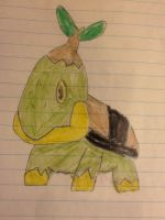 An old Turtwig drawing by HispanicOrca