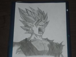 Rage of Gohan by DatKiddownthestreet