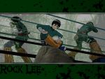 Rock Lee by Drunken-Style