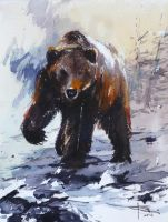 Grizzly-by-tony-belobrajdic by artiscon