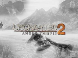 Uncharted 2 Wallpaper by Birdie94jb