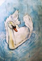 Swan on Watercolor (Brighter copy) by BugzAttack