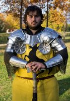 Asoiaf - Robert Baratheon by BonniePilgrim