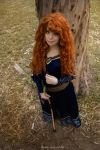 Merida Cosplay - Epilogue dress by Thecrystalshoe