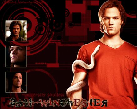 Soulless Sam Winchester by Naadal