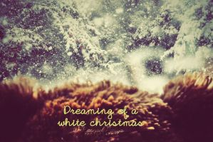 dreaming of a white christmas. by this-is-the-life2905