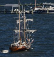 Sailing Ship Of Annapolis by Matthew-Beziat