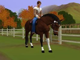 Sims 3 Pet Horse by Indianalovin