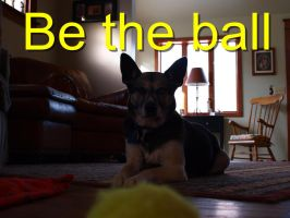 Be the Ball by canadienfan08
