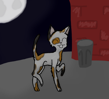 Stray Cat Strut by Perry--Agent