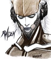 raiden mgs4 by hastati95