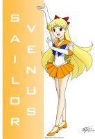 Sailor Venus Fan Art by ArthurT2013