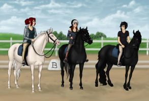 Dressage Meeting by just-sora
