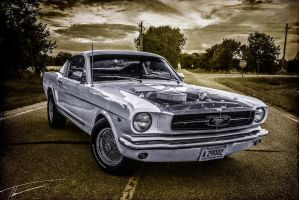 Mustang Fastback by FinalProof