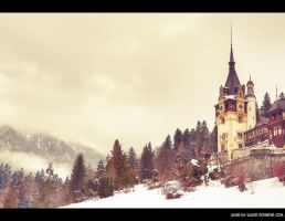 winter over royal domain... by Iulian-dA-gallery