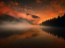 through the silence by werol
