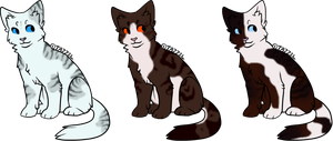 Cat Designs -Closed- by SpottedAdopts