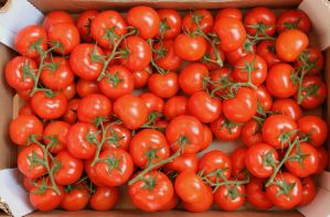 Tomatoes by AGF81