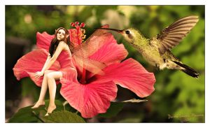Hibiscus Fairy by Trisste