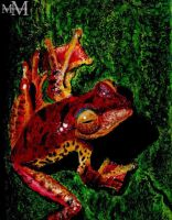 Tree frog by Miko-M