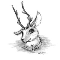 Monster: Jackalope by Speckled-Egg