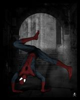 Spider Man by paulomonnerat